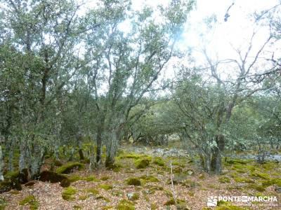 Barranco Río Dulce; tiendas senderismo; sendero verde;desafío senderista